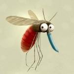 Banyak Nyamuk Di Rumahku